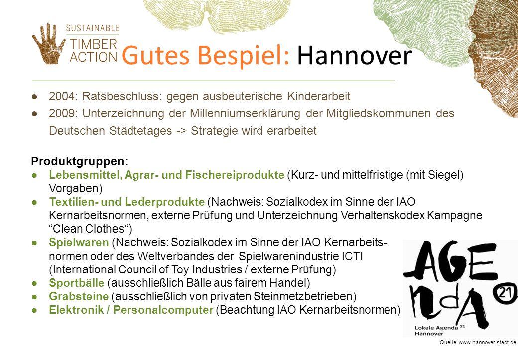 Gutes Bespiel: Hannover 2004: Ratsbeschluss: gegen ausbeuterische Kinderarbeit 2009: Unterzeichnung der Millenniumserklärung der Mitgliedskommunen des