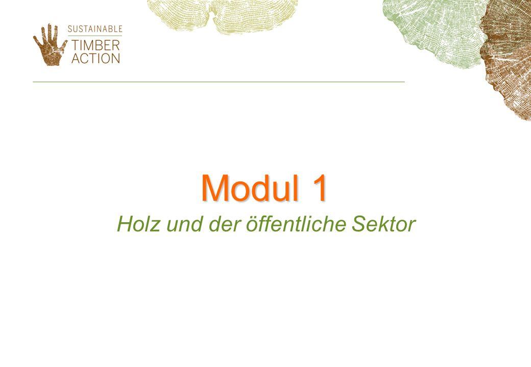Modul 1 Holz und der öffentliche Sektor