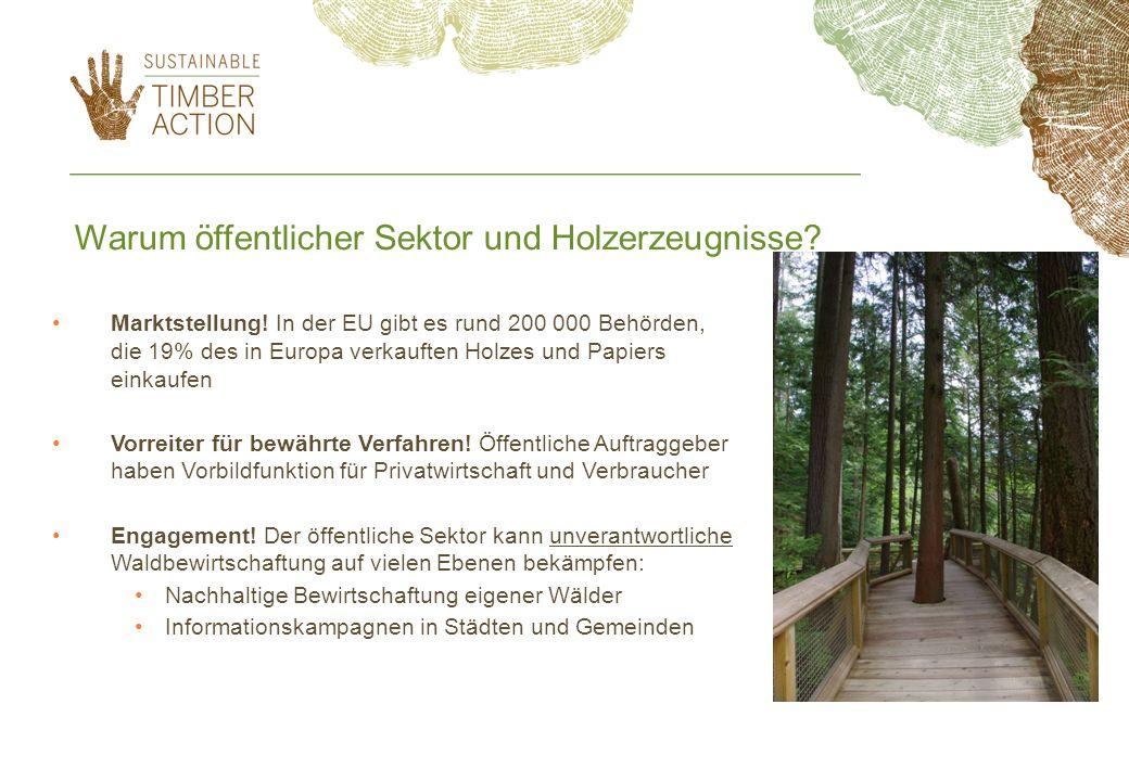 Warum öffentlicher Sektor und Holzerzeugnisse? Marktstellung! In der EU gibt es rund 200 000 Behörden, die 19% des in Europa verkauften Holzes und Pap