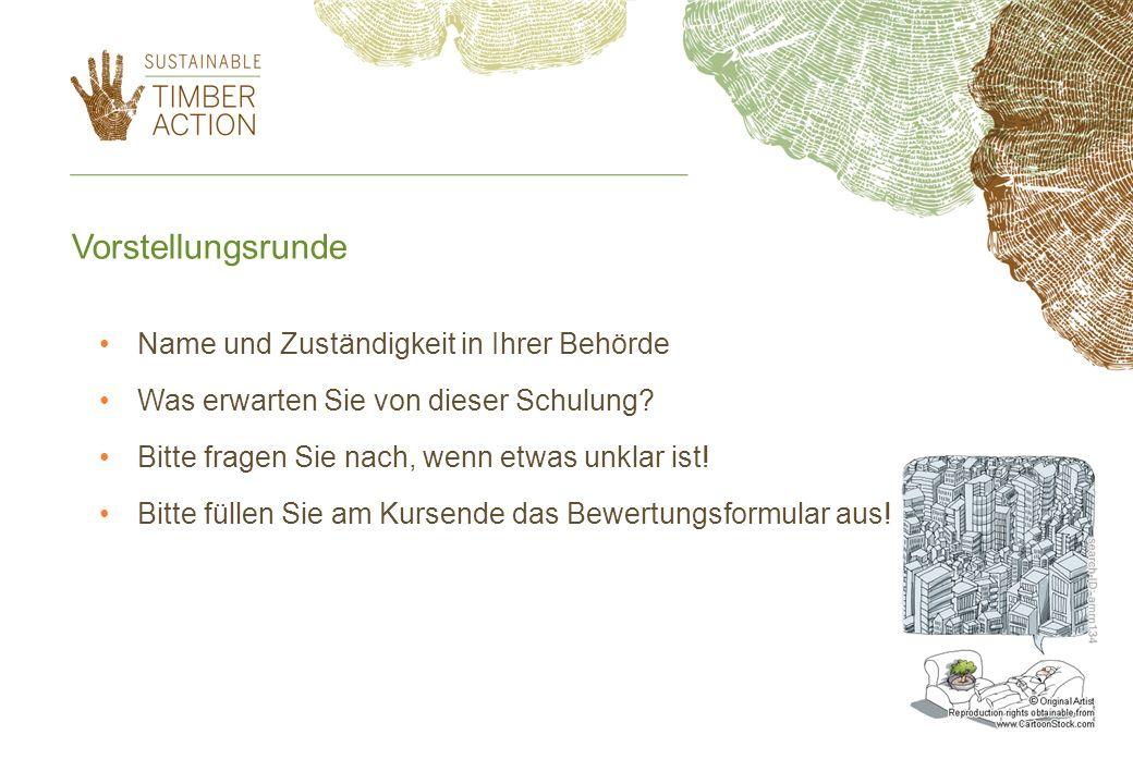Das Projekt STA - Aktion für nachhaltiges Holz Sustainable Timber Action in Europe