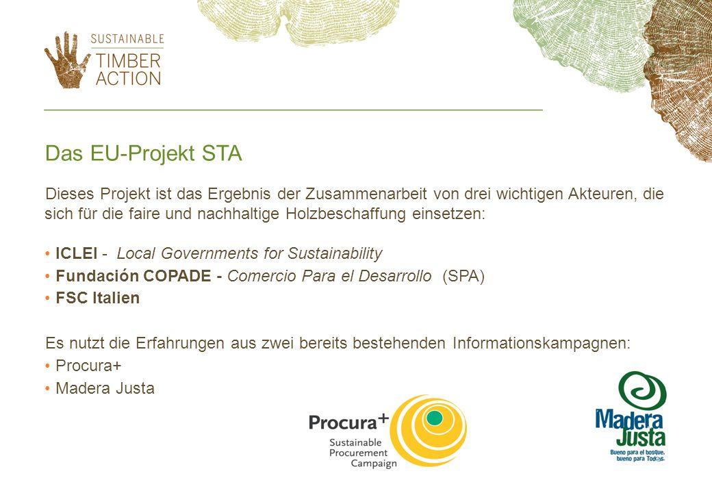 Dieses Projekt ist das Ergebnis der Zusammenarbeit von drei wichtigen Akteuren, die sich für die faire und nachhaltige Holzbeschaffung einsetzen: ICLE