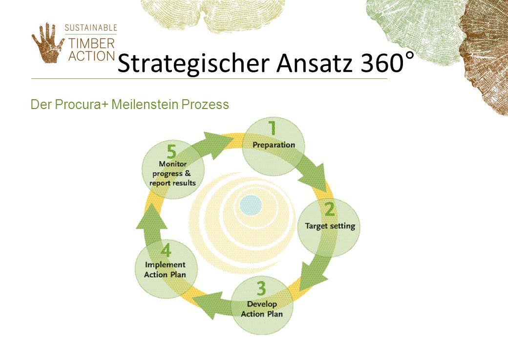 Strategischer Ansatz 360° Der Procura+ Meilenstein Prozess