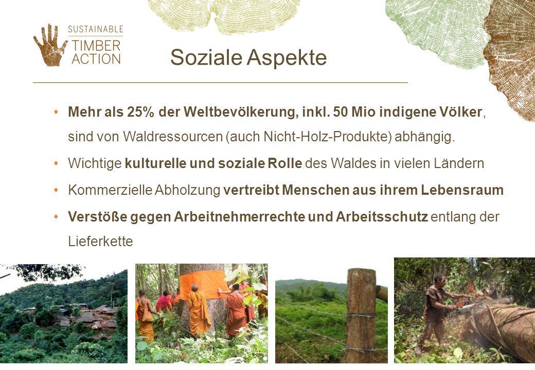 Soziale Aspekte Mehr als 25% der Weltbevölkerung, inkl.