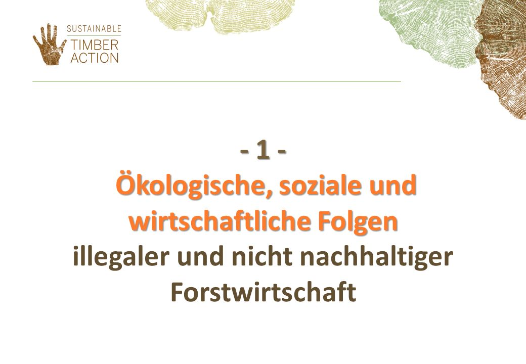 - 1 - Ökologische, soziale und wirtschaftliche Folgen - 1 - Ökologische, soziale und wirtschaftliche Folgen illegaler und nicht nachhaltiger Forstwirtschaft