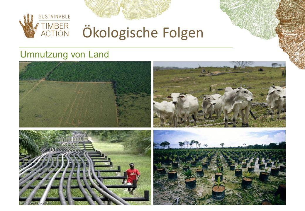 Umnutzung von Land Ökologische Folgen