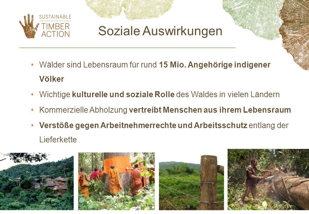 Soziale Auswirkungen Wälder sind Lebensraum für rund 15 Mio. Angehörige indigener Völker Wichtige kulturelle und soziale Rolle des Waldes in vielen Lä