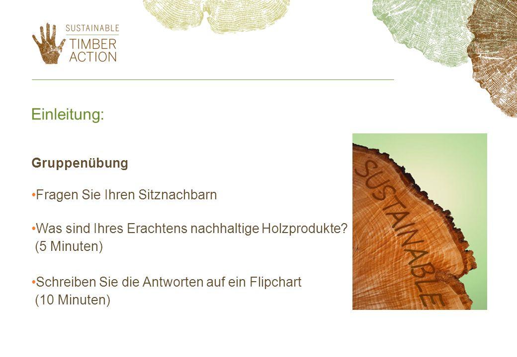 Einführung in nachhaltiges Holz