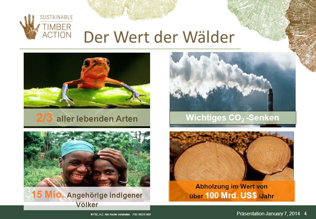 Was ist nachhaltiges Holz.