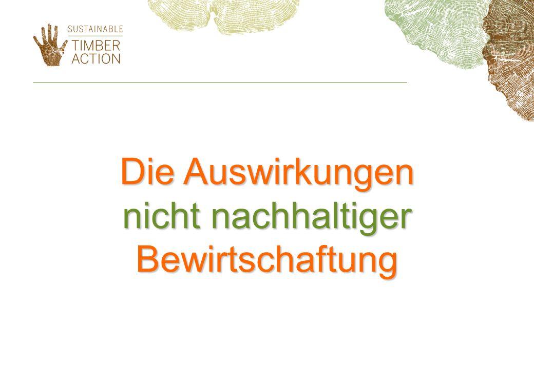 Nicht nachhaltige Modelle (a) Nicht nachhaltige Bewirtschaftung von Wäldern (rechtmäßige Abholzung, jedoch ohne langfristige Bewahrung der Funktionen des Waldes) (b) Illegale Abholzung und rechtswidriger Handel mit Holz- und Walderzeugnissen (c) Nachhaltige Forstwirtschaft, Abholzung und Handel mit Waldprodukten ohne Berücksichtigung sozialer Aspekte (Gleichheit, Gerechtigkeit)