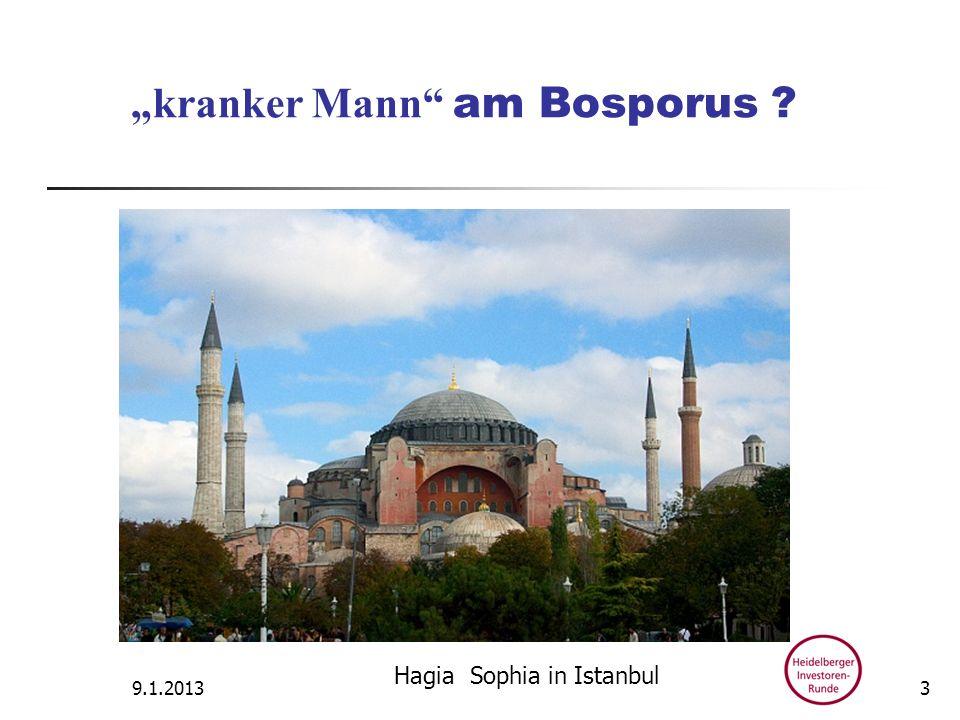 kranker Mann am Bosporus ? 9.1.2013 Hagia Sophia in Istanbul 3