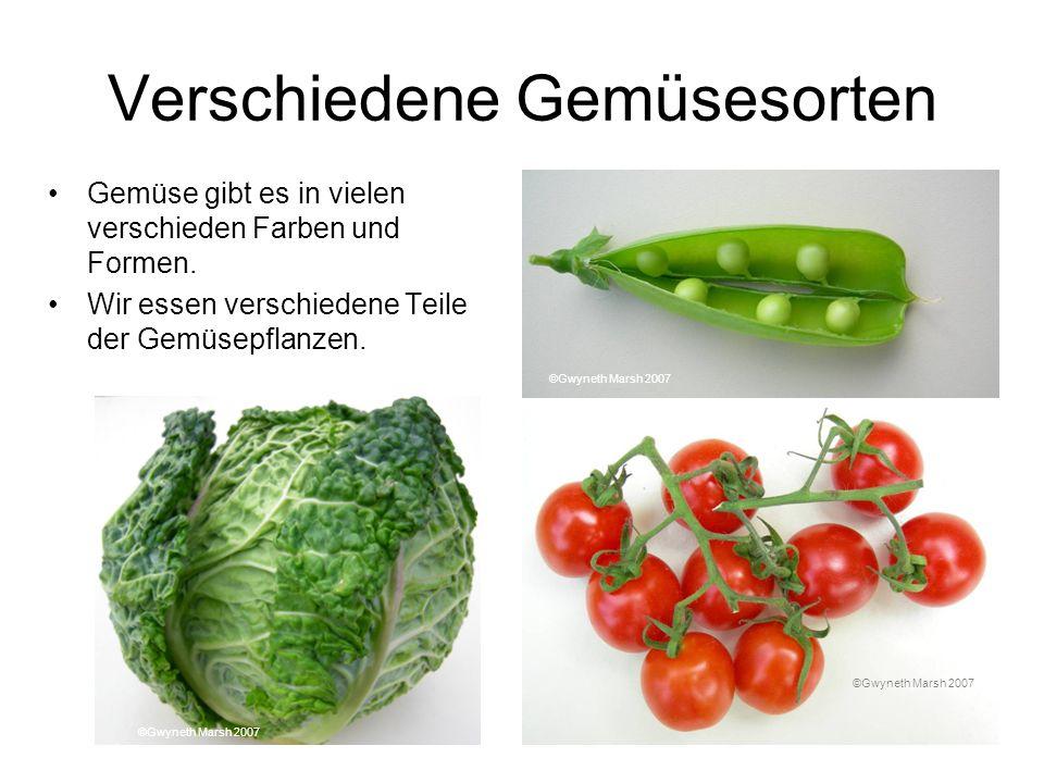 Verschiedene Gemüsesorten Gemüse gibt es in vielen verschieden Farben und Formen. Wir essen verschiedene Teile der Gemüsepflanzen. ©Gwyneth Marsh 2007