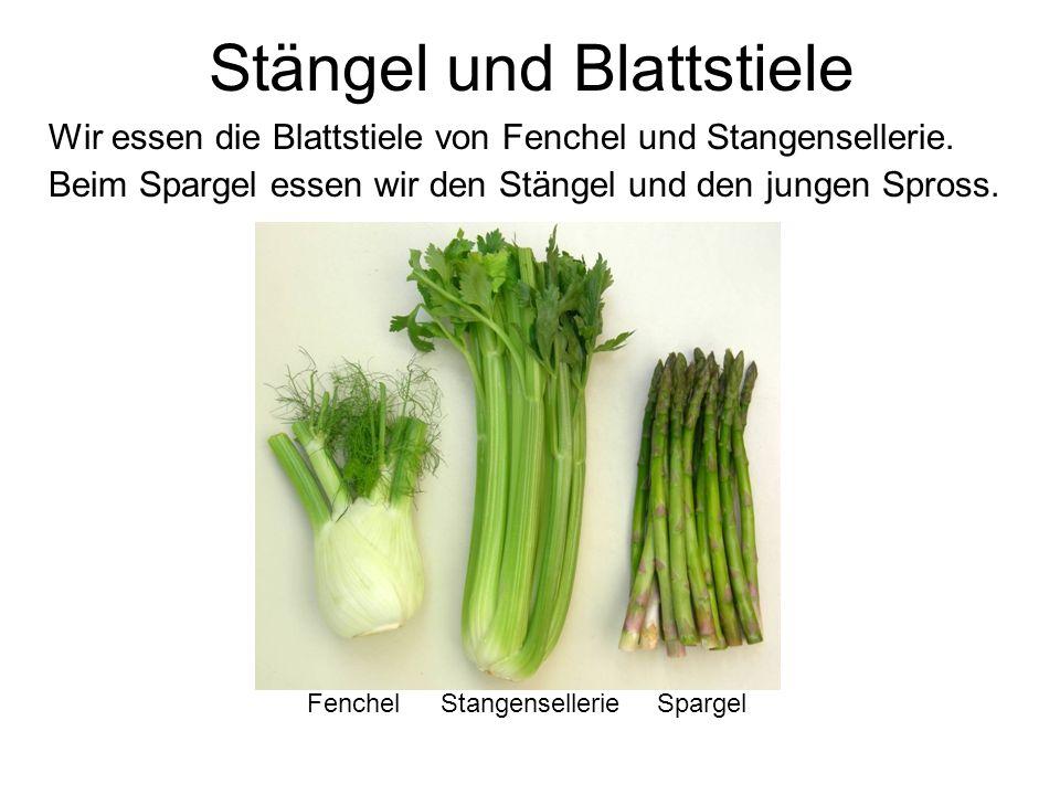 Blätter Die Blätter von Kohl, Salat, Spinat und Ruccula können roh oder gekocht gegessen werden.
