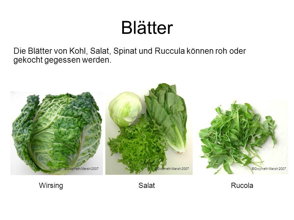Blätter Die Blätter von Kohl, Salat, Spinat und Ruccula können roh oder gekocht gegessen werden. WirsingRucolaSalat ©Gwyneth Marsh 2007