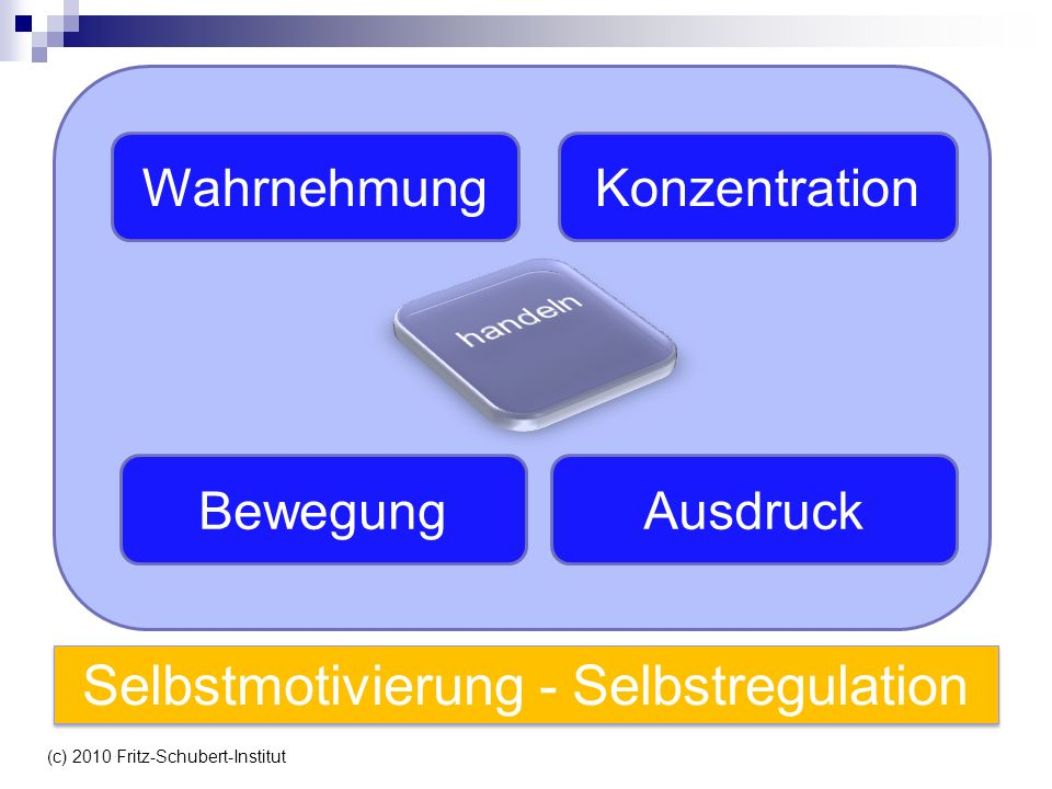 WahrnehmungKonzentration BewegungAusdruck Selbstmotivierung - Selbstregulation (c) 2010 Fritz-Schubert-Institut