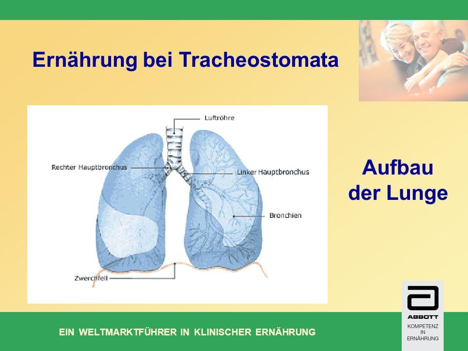 EIN WELTMARKTFÜHRER IN KLINISCHER ERNÄHRUNG Ernährung bei Tracheostomata Aufbau der Lunge