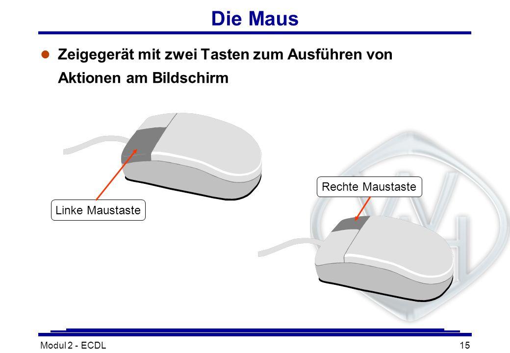 Modul 2 - ECDL15 l Zeigegerät mit zwei Tasten zum Ausführen von Aktionen am Bildschirm Die Maus Linke Maustaste Rechte Maustaste