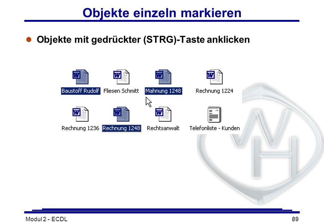 Modul 2 - ECDL89 Objekte einzeln markieren Objekte mit gedrückter (STRG)-Taste anklicken