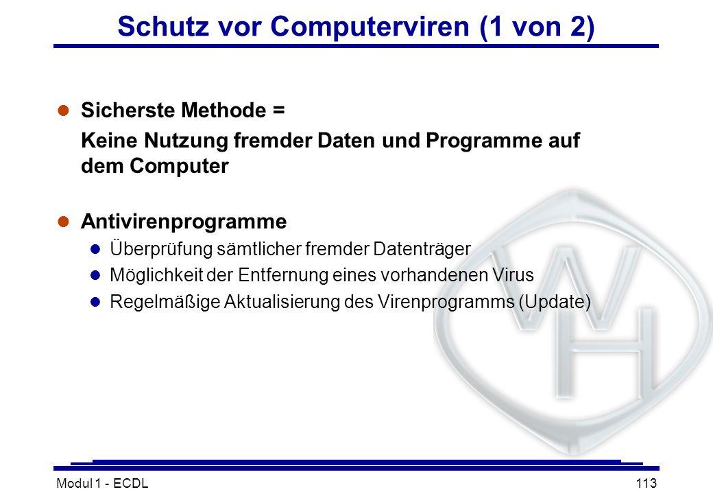 Modul 1 - ECDL113 Schutz vor Computerviren (1 von 2) l Sicherste Methode = Keine Nutzung fremder Daten und Programme auf dem Computer l Antivirenprogr