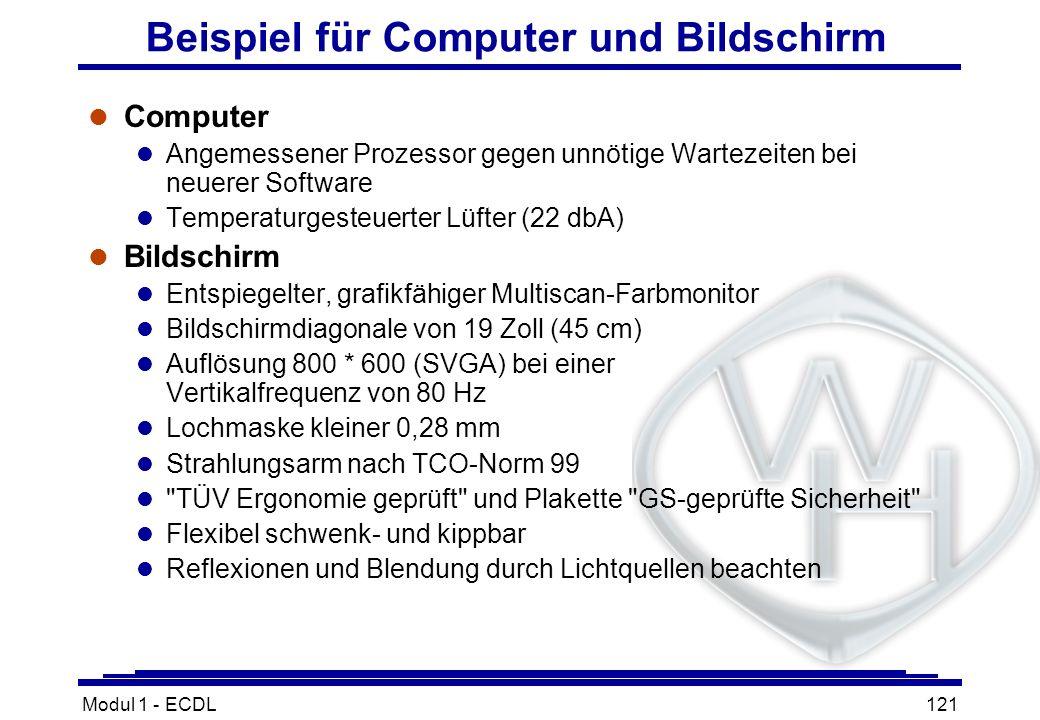 Modul 1 - ECDL121 Beispiel für Computer und Bildschirm l Computer l Angemessener Prozessor gegen unnötige Wartezeiten bei neuerer Software l Temperatu