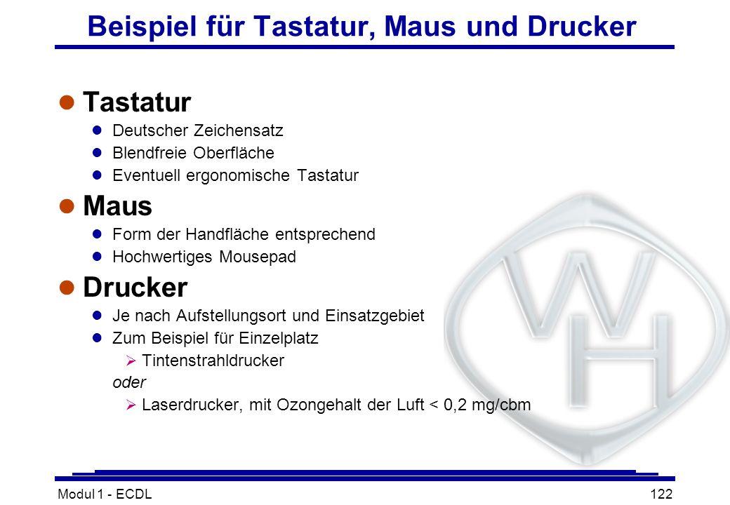 Modul 1 - ECDL122 Beispiel für Tastatur, Maus und Drucker l Tastatur l Deutscher Zeichensatz l Blendfreie Oberfläche l Eventuell ergonomische Tastatur
