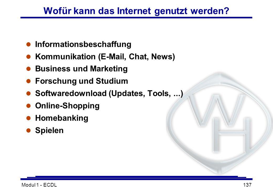 Modul 1 - ECDL137 Wofür kann das Internet genutzt werden? l Informationsbeschaffung l Kommunikation (E-Mail, Chat, News) l Business und Marketing l Fo