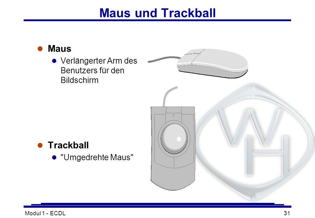 Modul 1 - ECDL31 Maus und Trackball l Maus l Verlängerter Arm des Benutzers für den Bildschirm l Trackball l