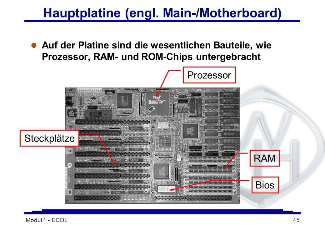 Modul 1 - ECDL45 l Auf der Platine sind die wesentlichen Bauteile, wie Prozessor, RAM- und ROM-Chips untergebracht Hauptplatine (engl. Main-/Motherboa