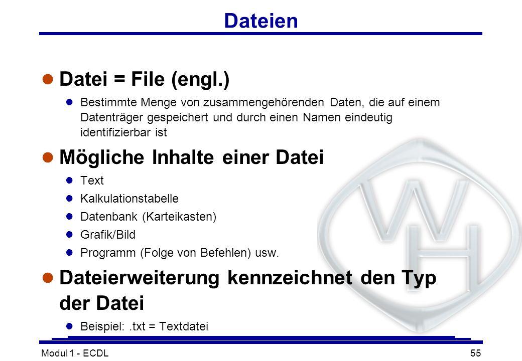 Modul 1 - ECDL55 Dateien l Datei = File (engl.) l Bestimmte Menge von zusammengehörenden Daten, die auf einem Datenträger gespeichert und durch einen