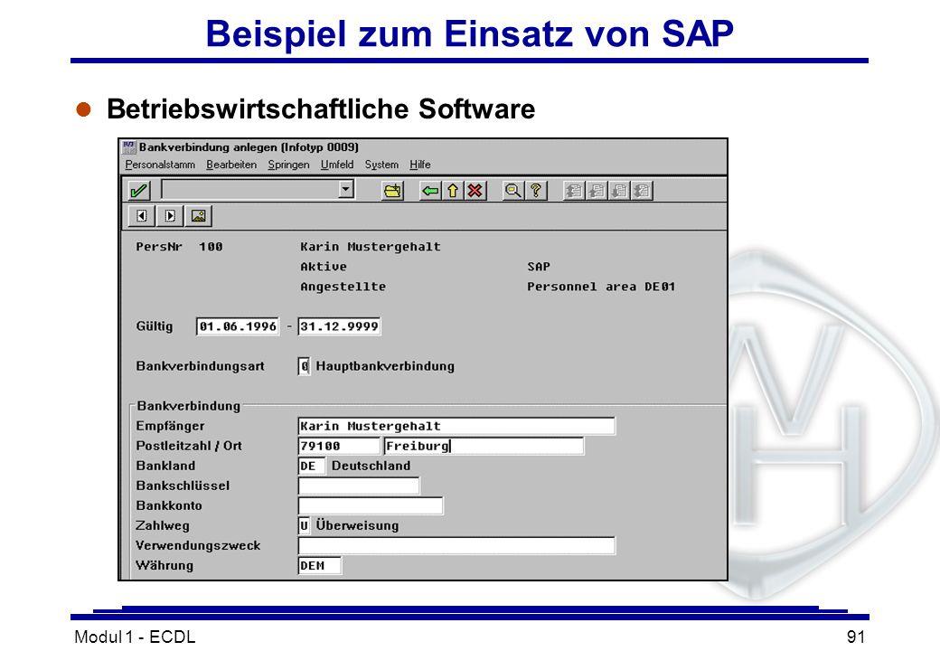 Modul 1 - ECDL91 Beispiel zum Einsatz von SAP l Betriebswirtschaftliche Software