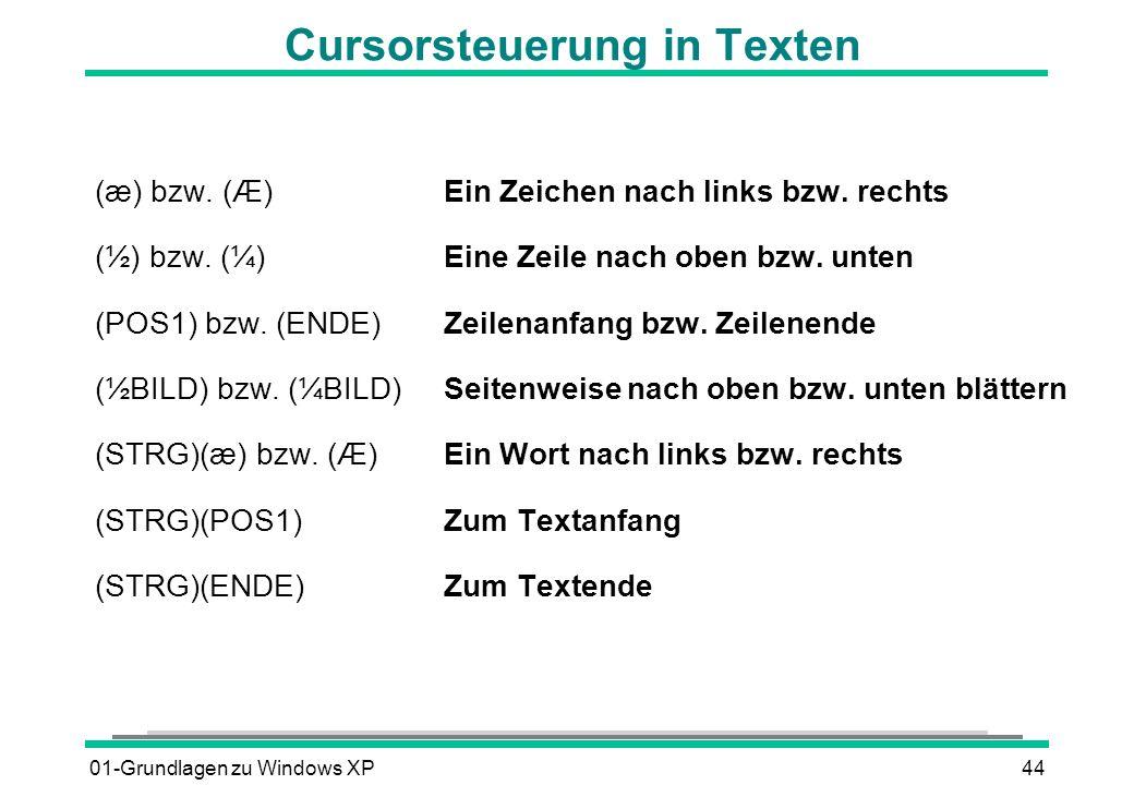 01-Grundlagen zu Windows XP44 Cursorsteuerung in Texten (æ) bzw.