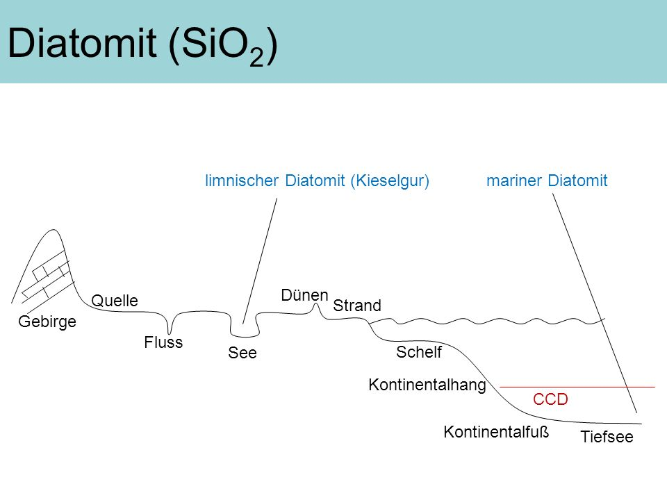 CCD Gebirge Tiefsee Fluss See Dünen Strand Schelf Kontinentalhang Kontinentalfuß Quelle Diatomit (SiO 2 ) limnischer Diatomit (Kieselgur)mariner Diato