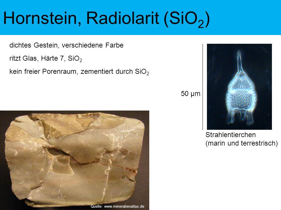 dichtes Gestein, verschiedene Farbe ritzt Glas, Härte 7, SiO 2 Strahlentierchen (marin und terrestrisch) 50 µm kein freier Porenraum, zementiert durch