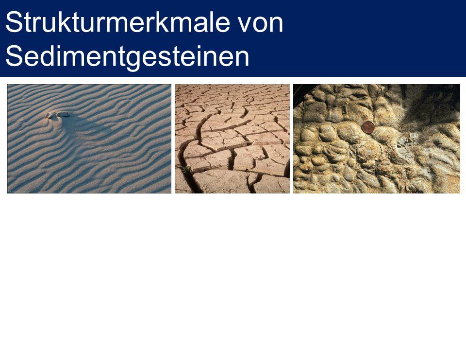 Strukturmerkmale von Sedimentgesteinen