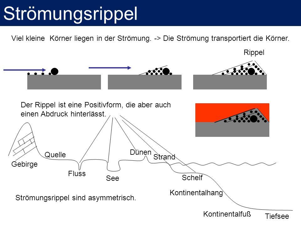 Gebirge Tiefsee Fluss See Dünen Strand Schelf Kontinentalhang Kontinentalfuß Quelle Der Rippel ist eine Positivform, die aber auch einen Abdruck hinte