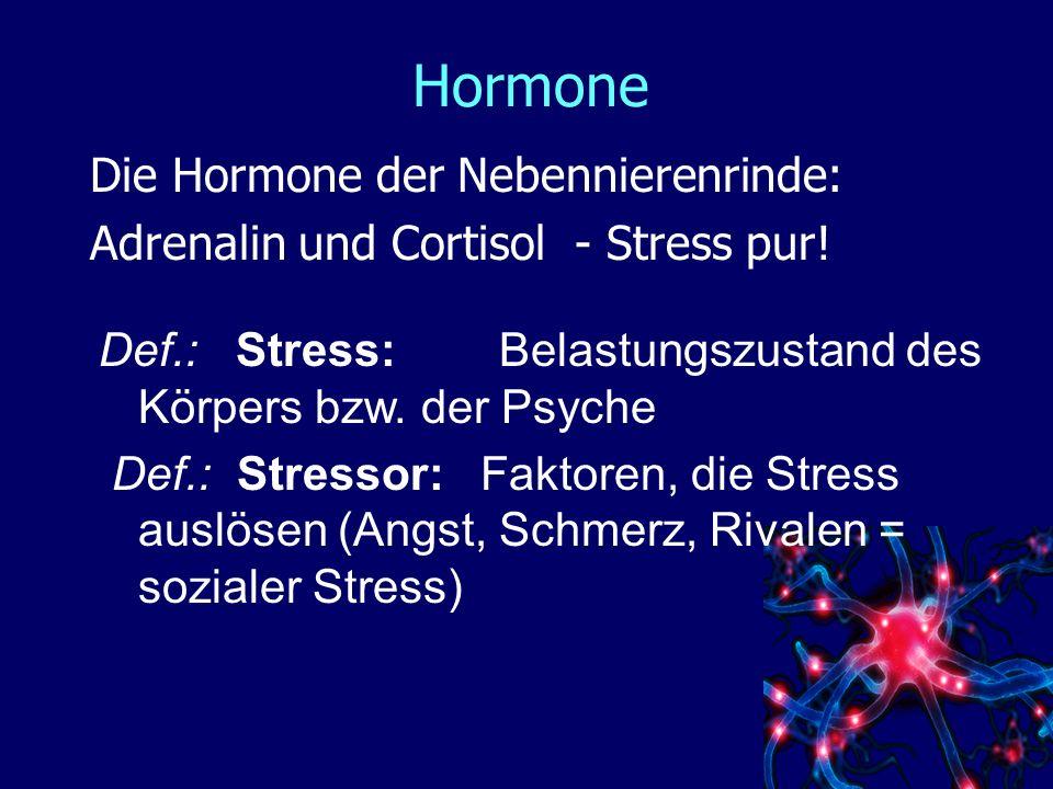 Hormone Die Hormone der Nebennierenrinde: Adrenalin und Cortisol - Stress pur.