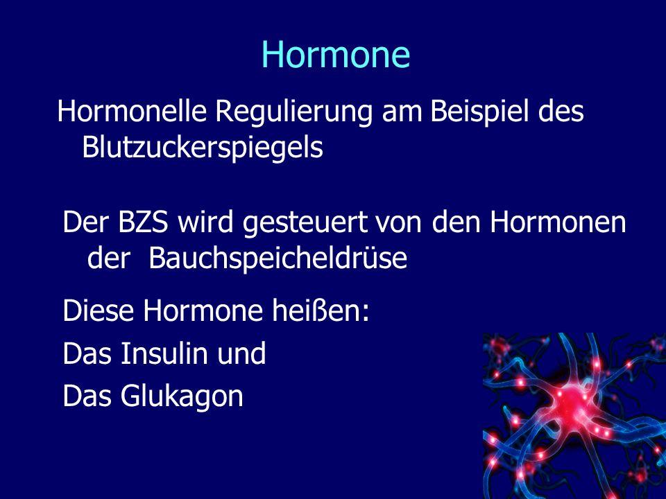 Hormone Hormonelle Regulierung am Beispiel des Blutzuckerspiegels Der BZS wird gesteuert von den Hormonen der Bauchspeicheldrüse Diese Hormone heißen: Das Insulin und Das Glukagon