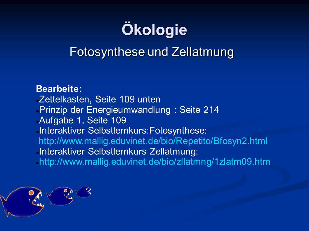 Ökologie Bearbeite: Zettelkasten, Seite 109 unten Prinzip der Energieumwandlung : Seite 214 Aufgabe 1, Seite 109 Interaktiver Selbstlernkurs:Fotosynth