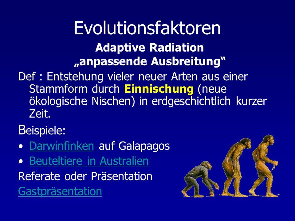Evolutionsfaktoren Def : Entstehung vieler neuer Arten aus einer Stammform durch Einnischung (neue ökologische Nischen) in erdgeschichtlich kurzer Zei