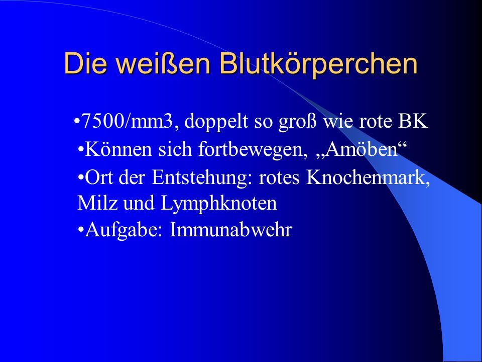 Die Blutplättchen ¼ so groß wie rote BK 300 000/mm3 Aufgabe: Blutgerinnung durch Fibrinfasern, Wundverschluss Werden nur 4 Tage alt Werden im Knochenmark gebildet