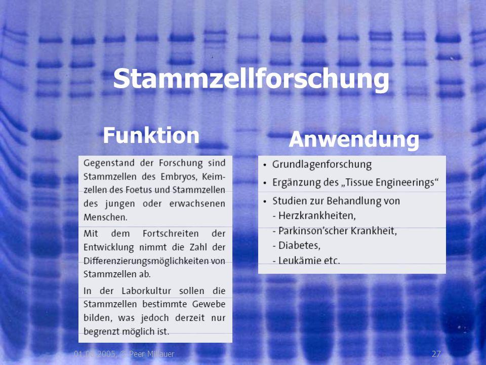 2701.08.2005, © Peer Millauer Funktion Stammzellforschung Anwendung