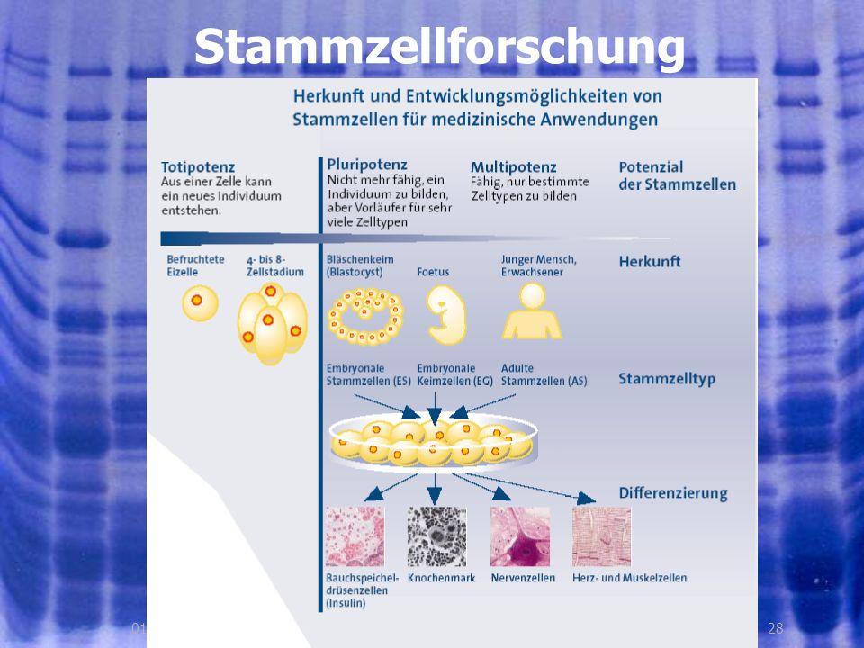 2801.08.2005, © Peer Millauer Stammzellforschung