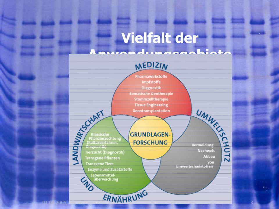 2401.08.2005, © Peer Millauer Anwendungsgebiete Gentherapie Behandlung von Krebs, Infektionskrankheiten, Herz – Kreislauferkrankungen, Erbleiden, etc.