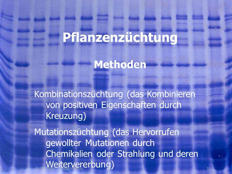 3801.08.2005, © Peer Millauer Methoden Pflanzenzüchtung Kombinationszüchtung (das Kombinieren von positiven Eigenschaften durch Kreuzung) Mutationszüc