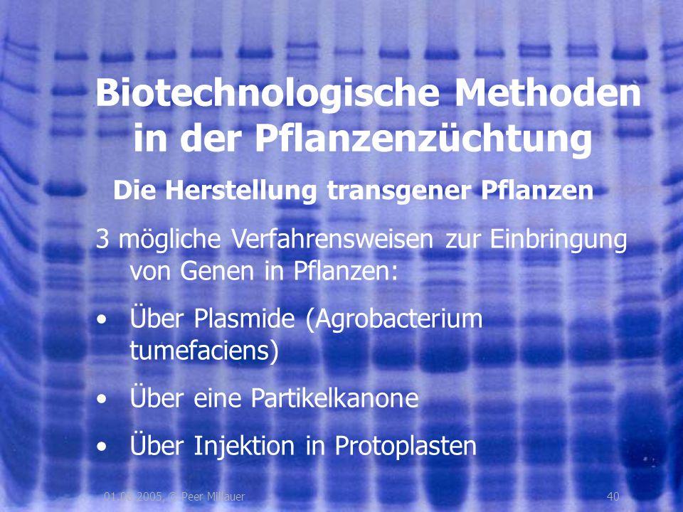 4001.08.2005, © Peer Millauer Die Herstellung transgener Pflanzen Biotechnologische Methoden in der Pflanzenzüchtung 3 mögliche Verfahrensweisen zur E