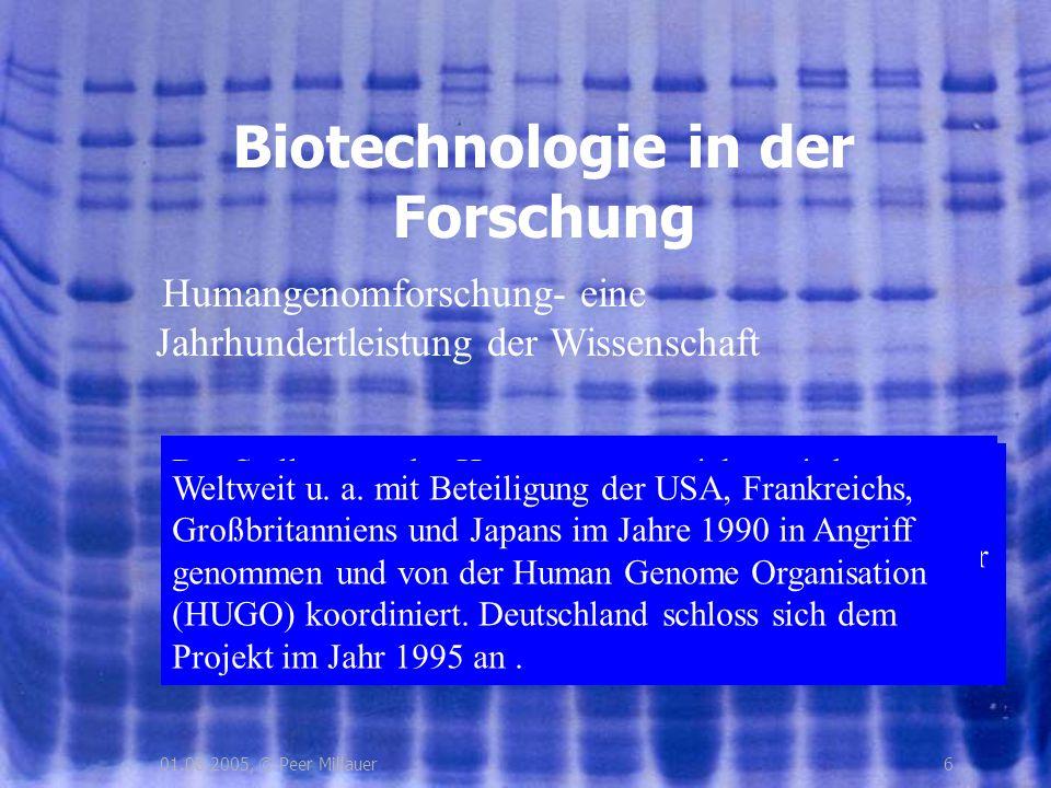 701.08.2005, © Peer Millauer Ziele der Genomforschung Genome des Menschen, verschiedener Tiere, Pflanzen und Bakterien erforschen Gesamtstruktur des Genoms und Genfunktionen bestimmen Neue Analysemethoden entwickeln Evolutionsbiologische Zusammenhänge erfassen Ethische Begleitforschung betreiben