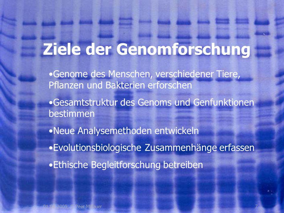 701.08.2005, © Peer Millauer Ziele der Genomforschung Genome des Menschen, verschiedener Tiere, Pflanzen und Bakterien erforschen Gesamtstruktur des G