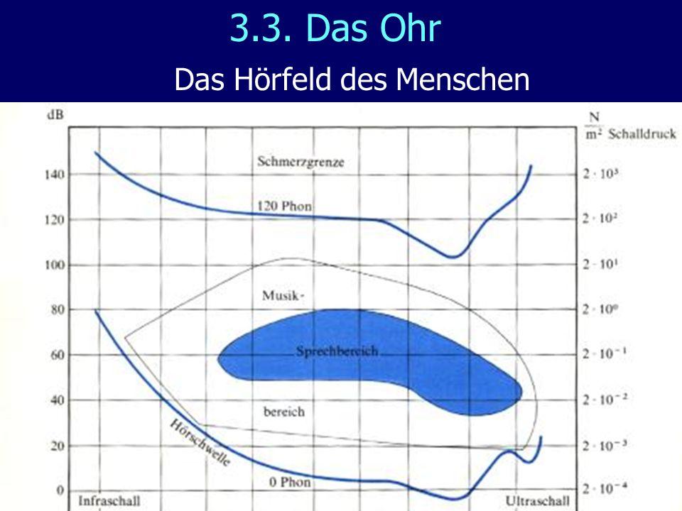 3.3. Das Ohr Das Hörfeld des Menschen