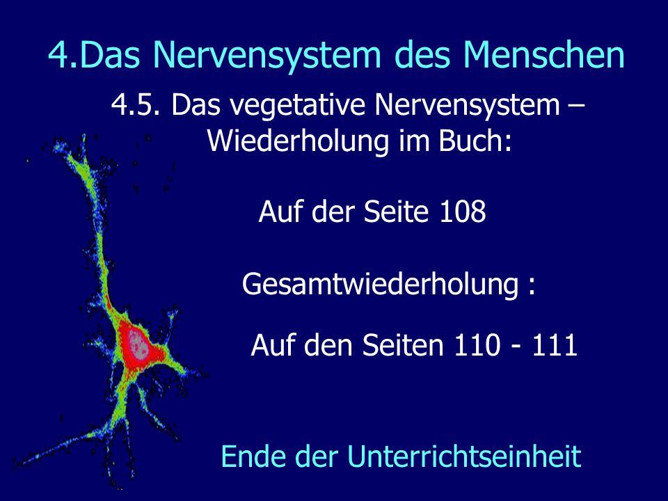 4.Das Nervensystem des Menschen 4.5. Das vegetative Nervensystem – Wiederholung im Buch: Auf der Seite 108 Gesamtwiederholung : Auf den Seiten 110 - 1