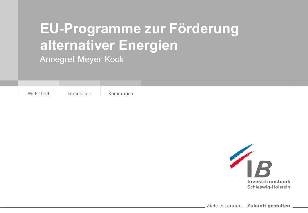 WirtschaftImmobilienKommunen EU-Programme zur Förderung alternativer Energien Annegret Meyer-Kock