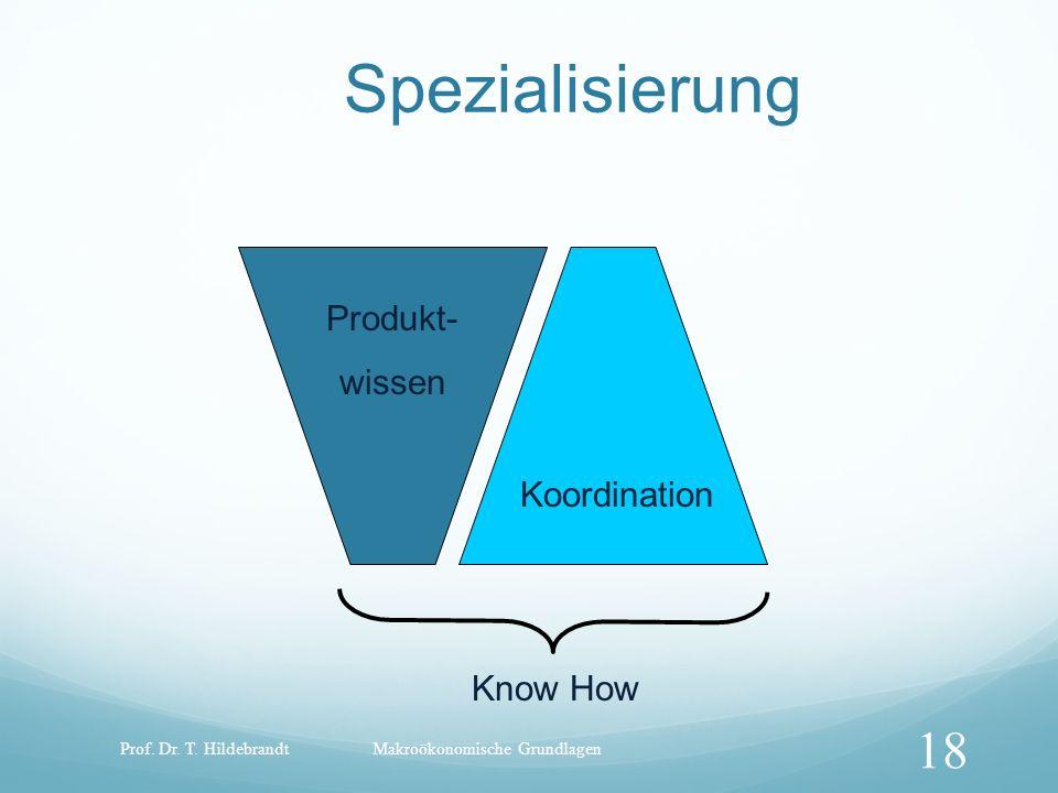 Spezialisierung Produkt- wissen Koordination Know How Prof. Dr. T. Hildebrandt 18 Makroökonomische Grundlagen